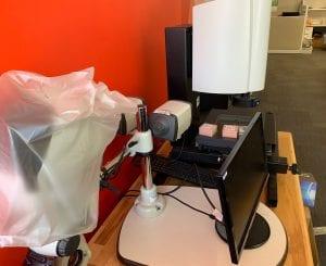 Buy Starlight  200  Microscope  60133 Online